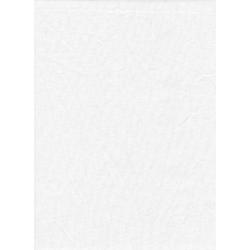 ProMaster Muslin background 10'x12' White