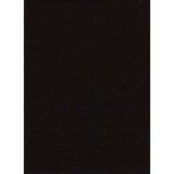 ProMaster Muslin background 10'x20' Black