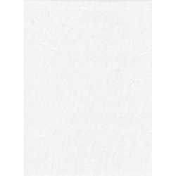 ProMaster Muslin background 10'x20' White