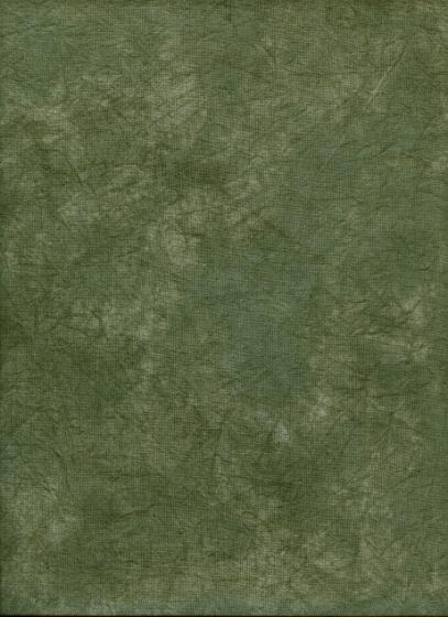 ProMaster Muslin background 10'x12' Green