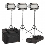 IKAN Mylo Kit with 3 Half X 1 LED Lights   #CLEARANCE