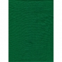 ProMaster Muslin background 10'x12' Chromakey Green