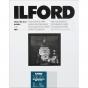 ILFORD Multigrade IV RC Deluxe 8X10/100 Pearl