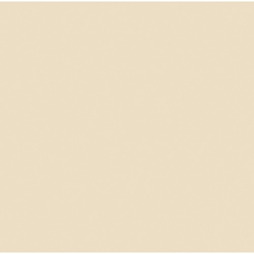 "ROSCO Amber RoscoSun 1/4 CTO 20""x24"" daylight conversion filter"