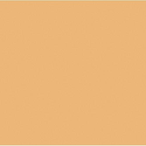 "ROSCO Amber RoscoSun 3/4 CTO 20""x24"" daylight conversion filter"
